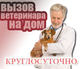 faq7.ru/images/imagehost/8188e79c8d7975b44a1621d0ee563f68.jpg